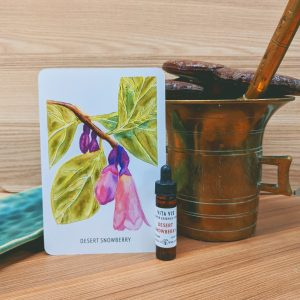 Photo of Desert Snowberry essence card and bottle