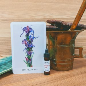 Photo of Dotted Blazing Star essence card and bottle