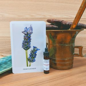 Photo of French Lavender essence card and bottle