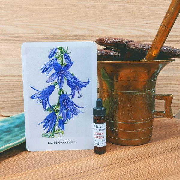 Photo of Garden Harebell essence card and bottle