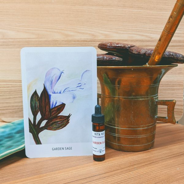 Photo of Garden Sage essence card and bottle