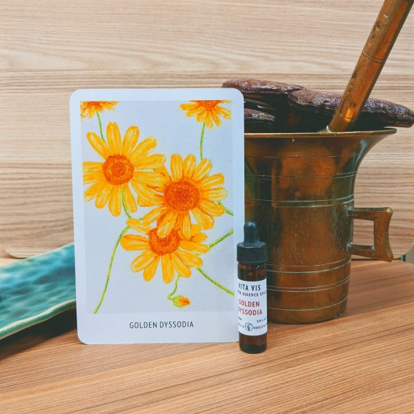 Photo of Golden Dissodia essence card and bottle