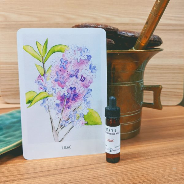 Photo of Lilac essence card and bottle