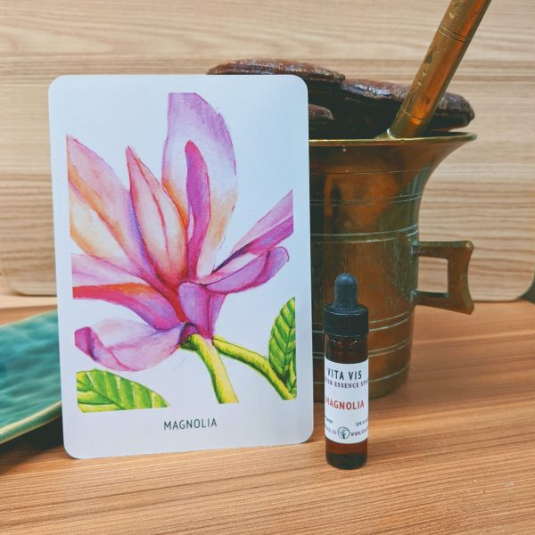 Photo of Magnolia essence card and bottle