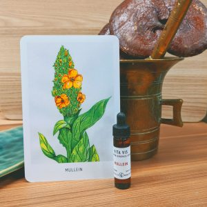 Photo of Mullein essence card and bottle