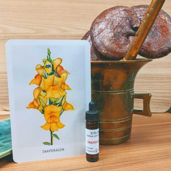 Photo of Snapdragon essence card and bottle