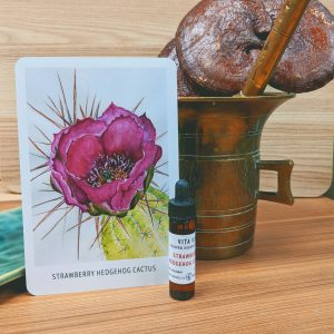 Photo of Strawberry Hedgehog Cactus essence card and bottle