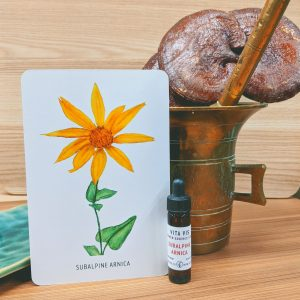 Photo of Subalpine Arnica essence card and bottle