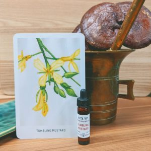 Photo of Tumbling Mustard essence card and bottle