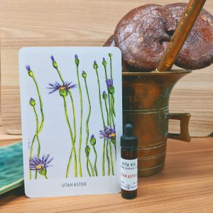 Photo of Utah Aster essence card and bottle