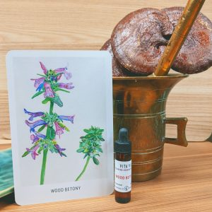 Wood Betony Flower Essence card & bottle